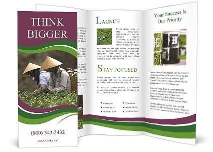 0000082154 Brochure Templates