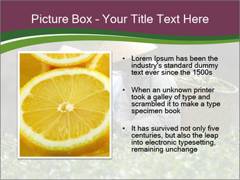 0000082154 PowerPoint Template - Slide 13