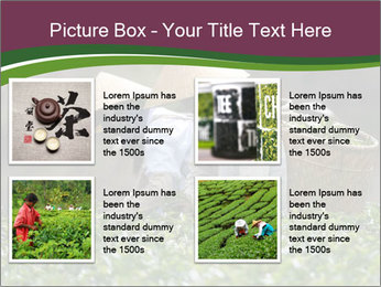 0000082154 PowerPoint Template - Slide 14