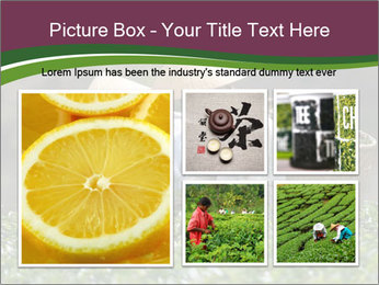 0000082154 PowerPoint Template - Slide 19
