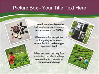 0000082154 PowerPoint Template - Slide 24
