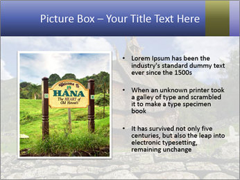 0000082155 PowerPoint Template - Slide 13