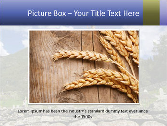 0000082155 PowerPoint Templates - Slide 15