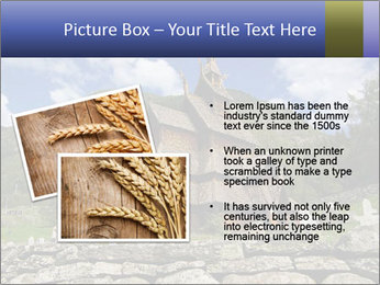 0000082155 PowerPoint Templates - Slide 20