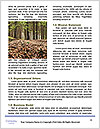 0000082155 Word Template - Page 4