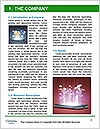 0000082157 Word Template - Page 3