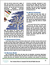 0000082161 Word Templates - Page 4