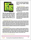 0000082164 Word Template - Page 4