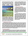 0000082171 Word Template - Page 4