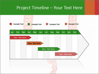 0000082177 PowerPoint Template - Slide 25