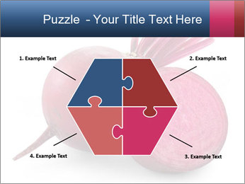0000082183 PowerPoint Templates - Slide 40