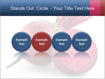 0000082183 PowerPoint Templates - Slide 76