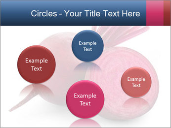 0000082183 PowerPoint Templates - Slide 77