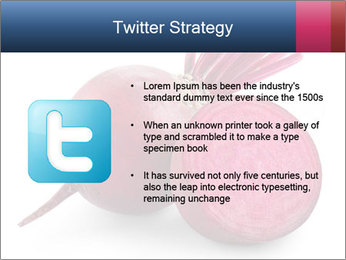 0000082183 PowerPoint Template - Slide 9