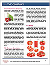 0000082183 Word Template - Page 3