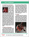 0000082198 Word Template - Page 3