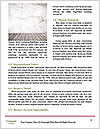 0000082204 Word Templates - Page 4