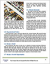 0000082206 Word Templates - Page 4