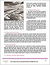 0000082212 Word Template - Page 4