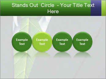 0000082213 PowerPoint Template - Slide 76