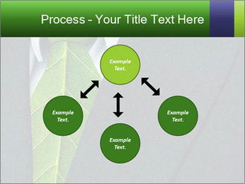 0000082213 PowerPoint Template - Slide 91