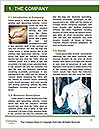 0000082219 Word Template - Page 3