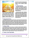 0000082224 Word Templates - Page 4