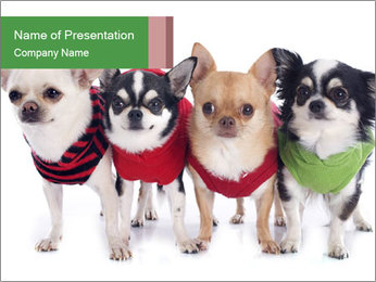 0000082236 PowerPoint Template - Slide 1