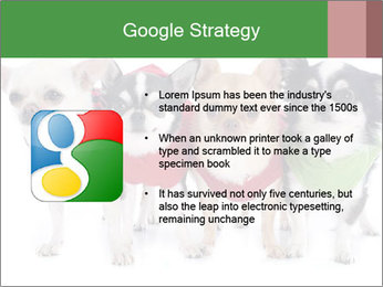 0000082236 PowerPoint Template - Slide 10