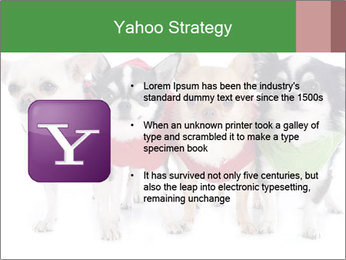 0000082236 PowerPoint Template - Slide 11