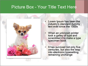 0000082236 PowerPoint Template - Slide 13