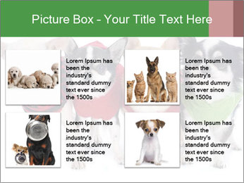 0000082236 PowerPoint Template - Slide 14
