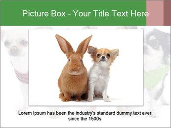 0000082236 PowerPoint Template - Slide 16