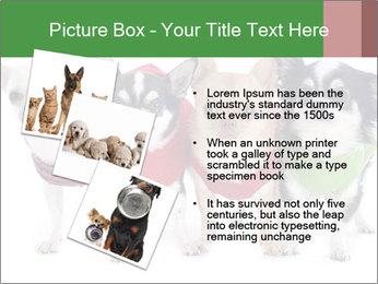 0000082236 PowerPoint Template - Slide 17