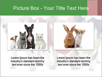 0000082236 PowerPoint Template - Slide 18