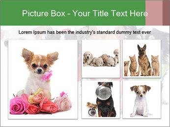 0000082236 PowerPoint Template - Slide 19