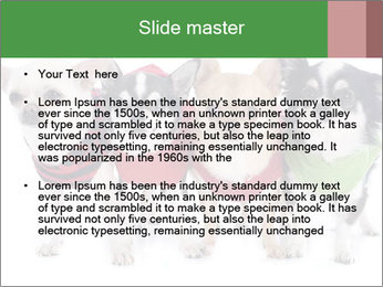 0000082236 PowerPoint Template - Slide 2