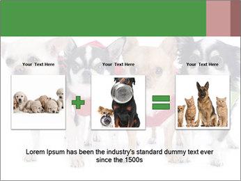 0000082236 PowerPoint Template - Slide 22