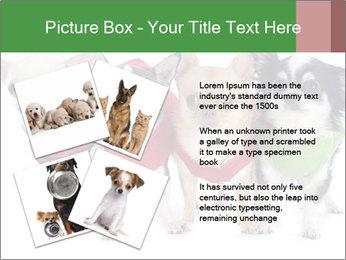 0000082236 PowerPoint Template - Slide 23