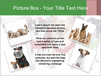 0000082236 PowerPoint Template - Slide 24