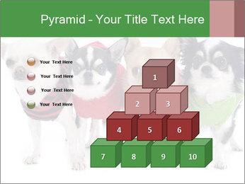 0000082236 PowerPoint Template - Slide 31