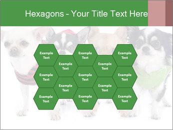 0000082236 PowerPoint Template - Slide 44