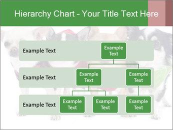 0000082236 PowerPoint Template - Slide 67