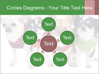 0000082236 PowerPoint Template - Slide 78