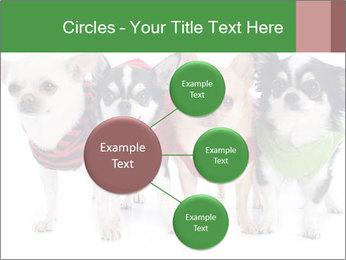 0000082236 PowerPoint Template - Slide 79