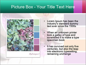 0000082238 PowerPoint Templates - Slide 13