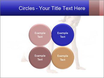 0000082240 PowerPoint Template - Slide 38