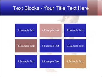0000082240 PowerPoint Template - Slide 68