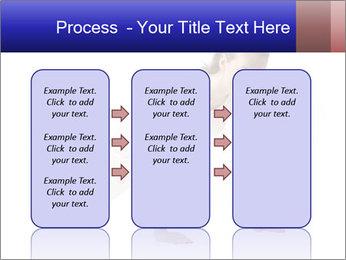 0000082240 PowerPoint Template - Slide 86