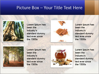 0000082241 PowerPoint Templates - Slide 14